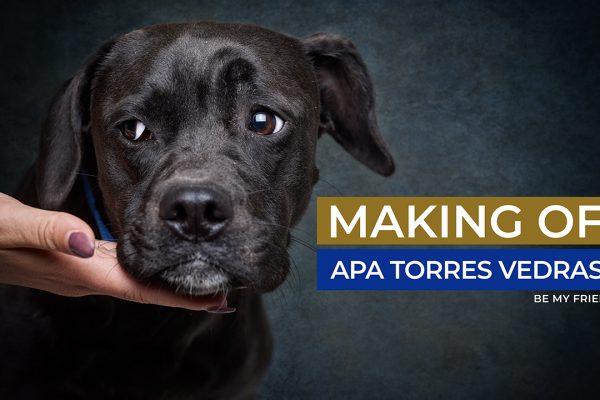 Making Of – Apa Torres Vedras